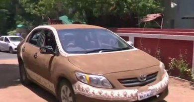 Vozilo je pred vročino zaščitila s – kakci